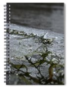 Frozen Milfoil Spiral Notebook