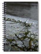 Frozen Milfoil Spiral Notebook