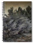 Frozen November Day Spiral Notebook