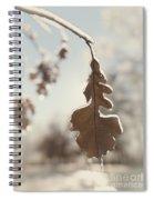 Frozen Oak Leaf Abstract Nature Detail Spiral Notebook