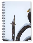 Frozen Perch Spiral Notebook