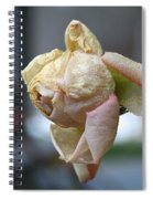 Frozen Rose Spiral Notebook