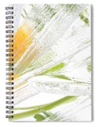 Frozen Spring Vii Spiral Notebook