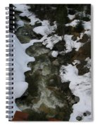 Frozen Stream Spiral Notebook