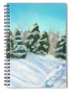 Frozen Sunshine Spiral Notebook