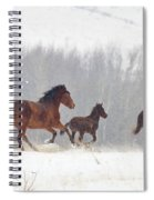 Frozen Track Spiral Notebook