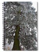 Frozen Tree 2 Spiral Notebook