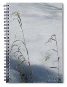 Frozen Wheat Spiral Notebook