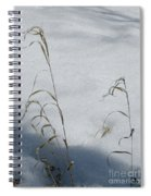 Frozen Wheat Spiral Notebook