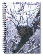 Frozen Wonder Spiral Notebook