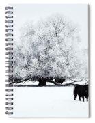 Frozen World Spiral Notebook