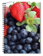 Fruit 2- Strawberries - Blueberries Spiral Notebook