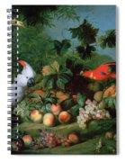 Fruit And Birds Spiral Notebook