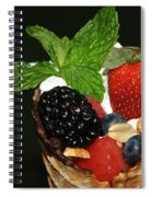 Fruit Cone Spiral Notebook