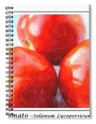 Fruit Of The Vine - Tomato - Vegetable Spiral Notebook