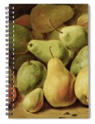 Fruit Still Life Spiral Notebook