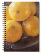 Fruit Still Life Oranges And Antique Silver Spiral Notebook