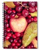 Fruit Spiral Notebook
