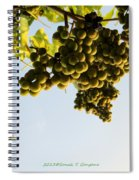 Fruits Of Nature Spiral Notebook