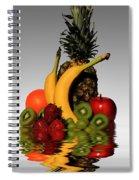 Fruity Reflections - Light Spiral Notebook