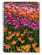 Fruity Tulips Spiral Notebook
