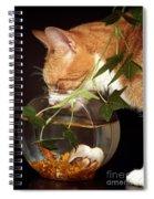Frustrated Feline Spiral Notebook