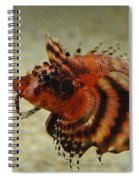 Fu Manchu Lionfish Spiral Notebook