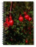 Fuchsia  Bells Spiral Notebook