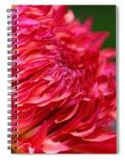 Fuchsia Flames Spiral Notebook