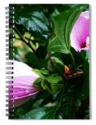 Fuchsia Flowers Laced In Droplets Spiral Notebook