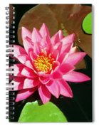 Fuchsia Pink Water Lilly Flower Floating In Pond Spiral Notebook
