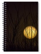 Full Moon Behind The Trees Spiral Notebook