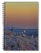 Full Moon Gathering Of Capricorn Spiral Notebook