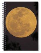 Full Moon II Spiral Notebook