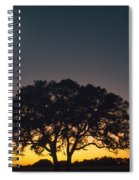 Full Moon Over Silhouetted Tree Spiral Notebook