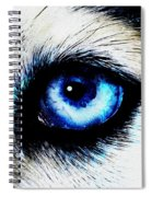 Full Moon Reflection Spiral Notebook