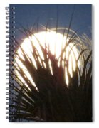 Full Moon Through The Palms Spiral Notebook