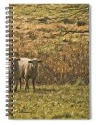 Full Of Wool Spiral Notebook