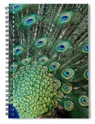 Full On Spiral Notebook
