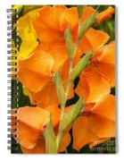 Full Stem Gladiolus Spiral Notebook