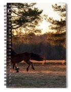Full Tilt Boogie Spiral Notebook