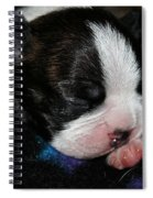 Fun To Come Spiral Notebook
