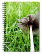 Fungi Spiral Notebook