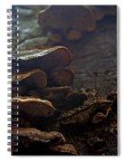 Fungus 11 Spiral Notebook