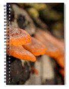 Fungus 2 Spiral Notebook