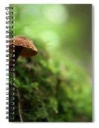 Fungus 4 Spiral Notebook