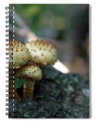 Fungus 8 Spiral Notebook