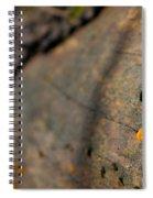 Fungus Spiral Notebook