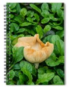 Fungus Among The Ajuga Spiral Notebook