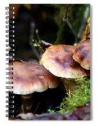 Fungus Among Us II Spiral Notebook